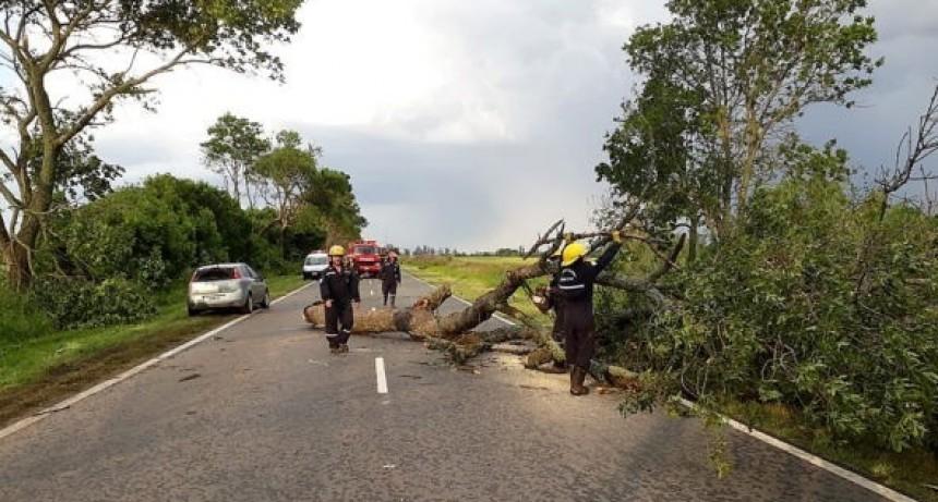 La tormenta hizo sentir su rigor en Chacabuco