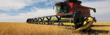 Info para el sector agropecuario