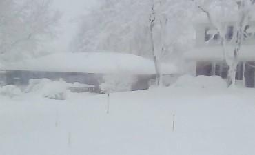 Frío extremo.  Impactantes fotos de la ola polar en Canadá y EE.UU.