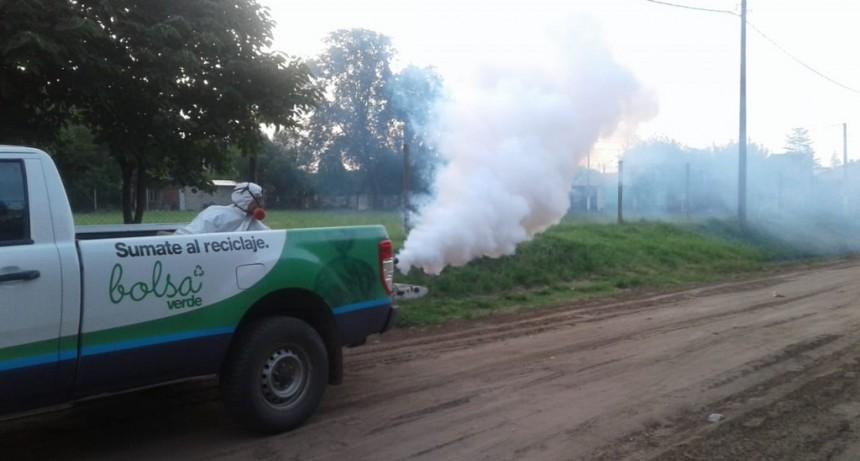 Fumigan contra los mosquitos