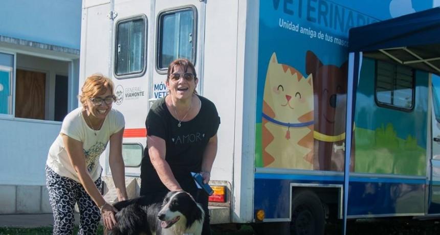 La unidad veterinaria móvil sigue realizando castraciones gratuitas