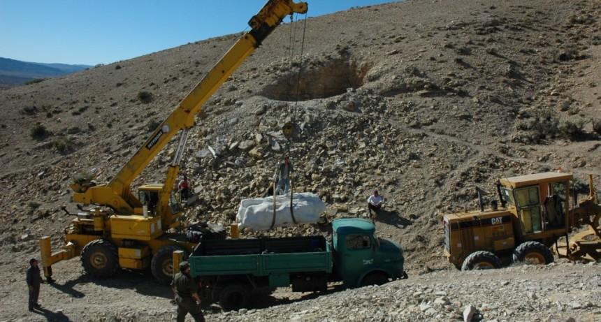 Descubren restos de dos dinosaurios en Chubut y Santa Cruz