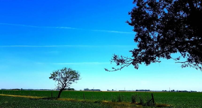 INFO GRAL. Para el hombre de campo. Presenta Asociación rural de Gral Viamonte