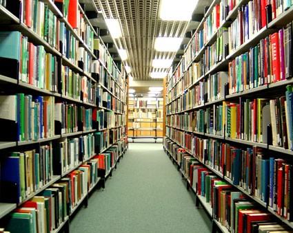 Bibliotecarios/as tienen su asueto también