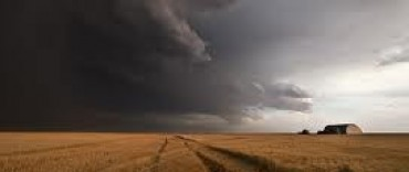 "Un febrero ""seco"" preocupa al sector del campo"