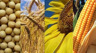 Toda la info para el sector agropecuario